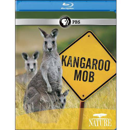 Nature: Kangaroo Mob (Blu-ray)