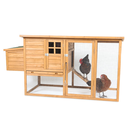Petmate Flat Top Complete Chicken Coop with 2 Roosting Bar