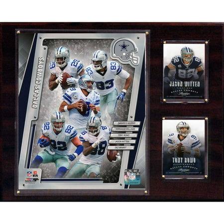 C&I Collectables NFL 12x15 Dallas Cowboys 2014 Team Plaque (Dallas Cowboys Team)
