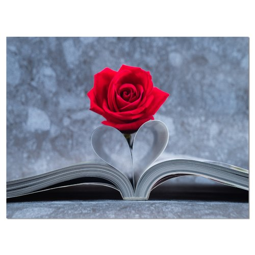 Design Art 'Red Rose Inside the Book' Graphic Art on Wrapped Canvas