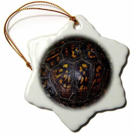 - 3dRose Terrapin Box Turtle Shell, Snowflake Ornament, Porcelain, 3-inch