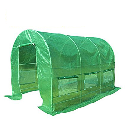 Quictent Portable Walk-In Greenhouse for Outdoor, Multi-Size 12' 20' by