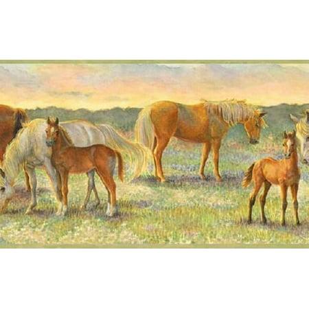 878926 Field of Horses Wallpaper Border - Wallpaper Of Halloween