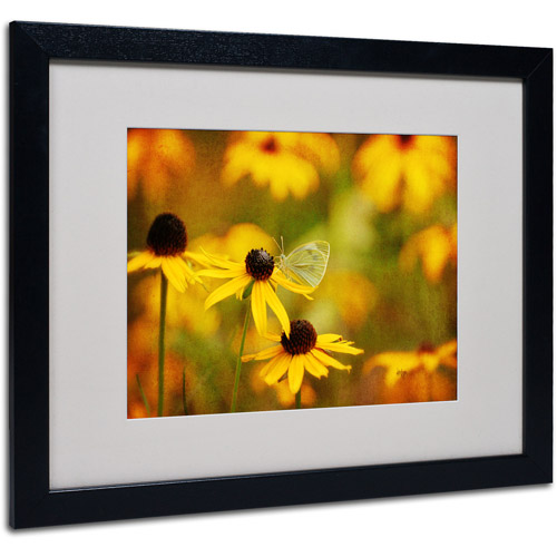 "Trademark Fine Art ""Abundance"" by Lois Bryan, Black Frame"