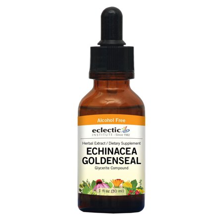 Echinacea - Goldenseal No Alcohol Glycerite Eclectic Institute 1 oz (Eclectic Institute Echinacea Goldenseal)