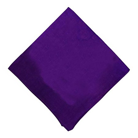 Basic Napkin - Daily Basic Special Edition Solid 100% Cotton Premium 22 x 22 Cloth Napkins - 12 Pack
