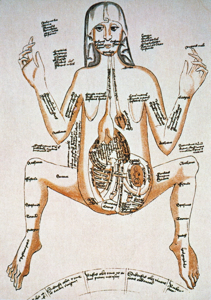 Anatomy Pregnancy 16th C Na Pregnant Woman Drawing 16th Century