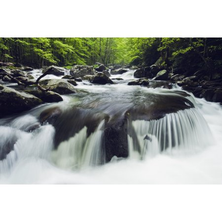 Tennessee United States Of America Curved Cascade On The Middle Prong River In The Great Smokey Mountains National Park Canvas Art - Natural Selection Robert Cable  Design Pics (38 x (America's Best Middle River)