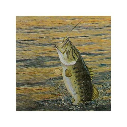 Hunting 'Gone Fishing' Small Napkins (16ct)
