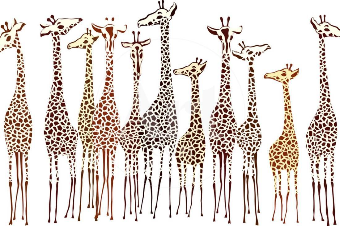 Two Giraffes on safari Canvas wall Art prints high quality great value