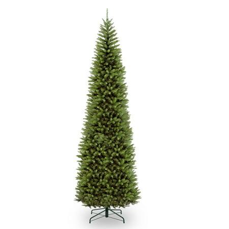 12 ft. Kingswood Fir Pencil Tree