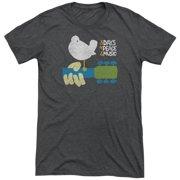 Woodstock Perched Mens Tri-Blend Short Sleeve Shirt