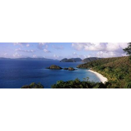 Trees on the coast Trunk Bay Virgin Islands National Park St John US Virgin Islands Canvas Art - Panoramic Images (18 x