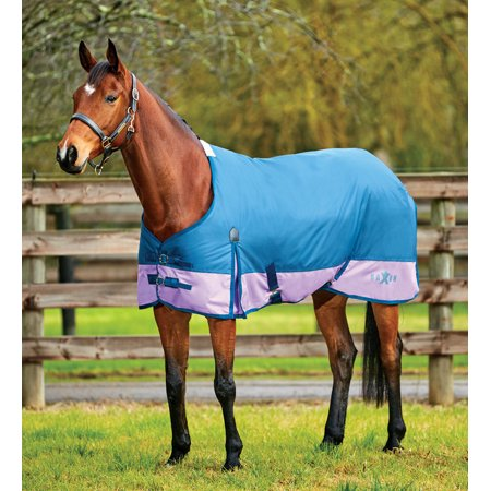 Saxon 600D Standard Neck Turnout Blanket, 180g (Saxon 600d Turnout Sheet)