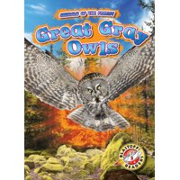 Animals of the Forest: Great Gray Owls (Hardcover)