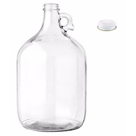 Home Brew Ohio Glass Water Bottle Includes 38 mm Metal Screw Cap, 1 gallon Ca...