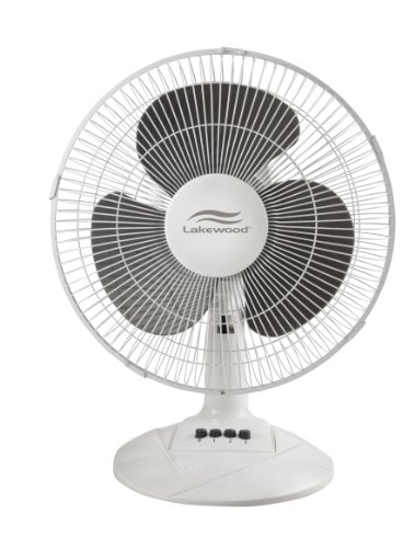 Holmes LDF1210BWM 12 Inch Three Speed Oscillating Desk Fan, Metal/plastic,