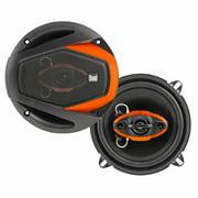 """Dual DWS524 125W 5.25"""" 4-Way Speakers"""