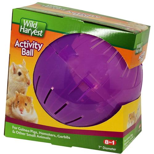 "Wild Harvest 7"" Pet Activity Ball"