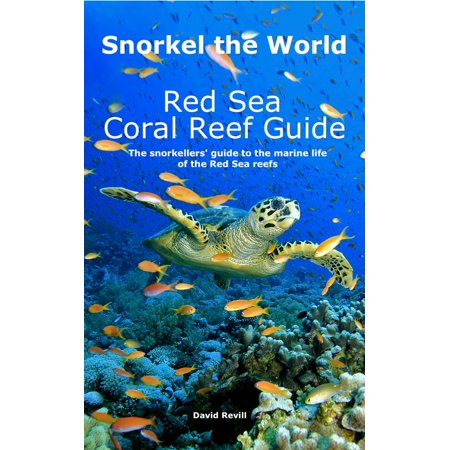 Snorkel the World: Red Sea Coral Reef Guide - eBook Coral Sea Reef Guide