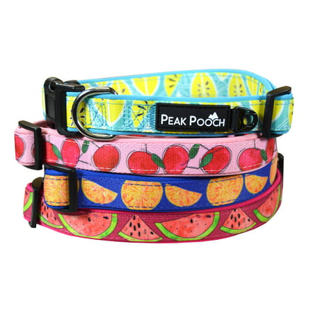 Unique Designer Dog Collar, Soft Padded Adjustable, For Small, Medium and Large Dogs (Designer Dog Collar And Leash)