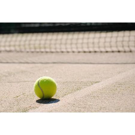 Framed Art For Your Wall Tennis Ball Tennis Ball Tennis Court Sport