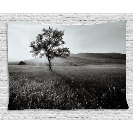 Black and White Decorations Tapestry, Lonely Tree Rural Landscape Nature Hills Outdoors, Wall Hanging for Bedroom Living Room Dorm Decor, 60W X 40L Inches, Light Grey Black White, by (Hill Outdoor Hanging Wall)