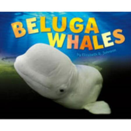 Beluga Whales - Beluga Whale Costume