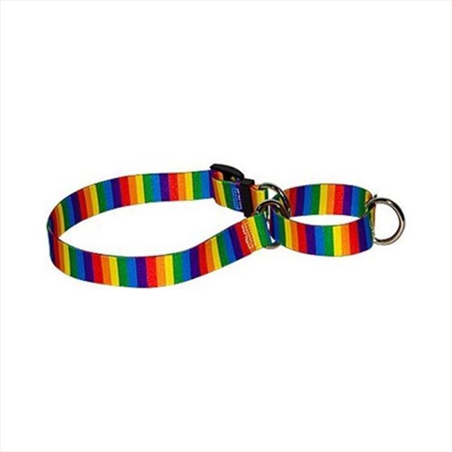 Yellow Dog Design M-RS101S Rainbow Stripes Martingale Collar - Small