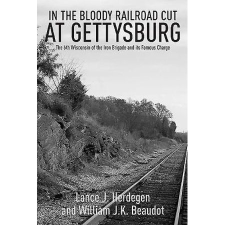 In the Bloody Railroad Cut at Gettysburg : The 6th Wisconsin of the Iron Brigade and Its Famous (Iron Brigade Best Weapons)