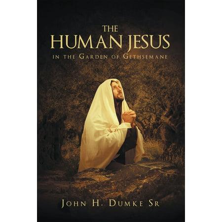 The Human Jesus in the Garden of Gethsemane - (Jesus Arrested In The Garden Of Gethsemane)