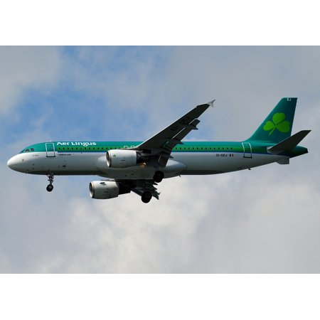 Laminated Poster Aer Lingus Air Aircraft Airplane Plane Flight Sky Poster Print 24 X 36
