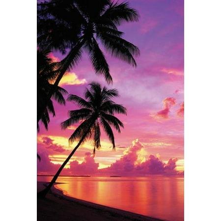 Tahitian Sunset Palm Tree Tropical Ocean Beach Sunset Photo Poster   24X36