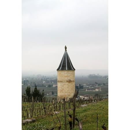 Canvas Print Vineyards France Saint Emilion Vineyard Wine Stretched Canvas 10 x - Saint Emilion Vineyards
