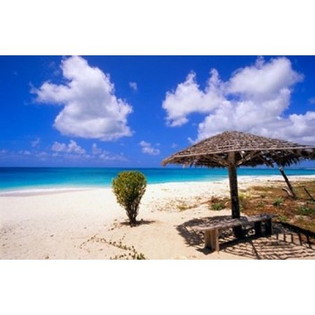 Coco Point Beach Barbuda Antigua Canvas Art Michael Defreitas Danitadelimont 36 X 24