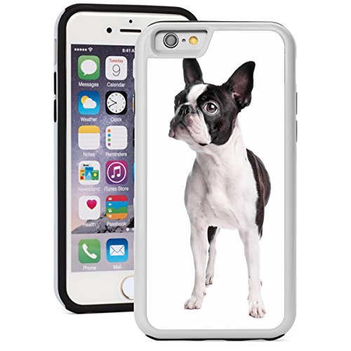 For Apple iPhone 6 Plus 6s Plus Shockproof Impact Hard Soft Case Cover Boston Terrier Dog (White)