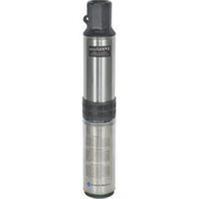 Pump Sub 1/2Hp 3-Wire 220 Vlt RL12G05-3W2V - image 1 de 1