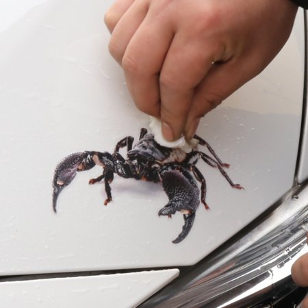3D Car Stickers Animals Bumper Stickers Spider Lizard Scorpions Decor Car-styling Sticker Auto Motorcycle Decorations - image 5 de 7