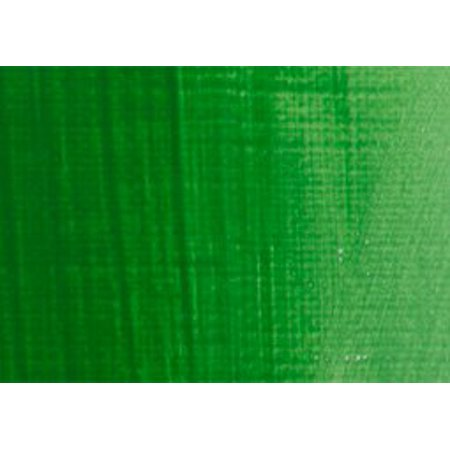 Bottle Permanent Green - RAS Tempera Paint for Kids 32 oz Bottle - Permanent Green Light
