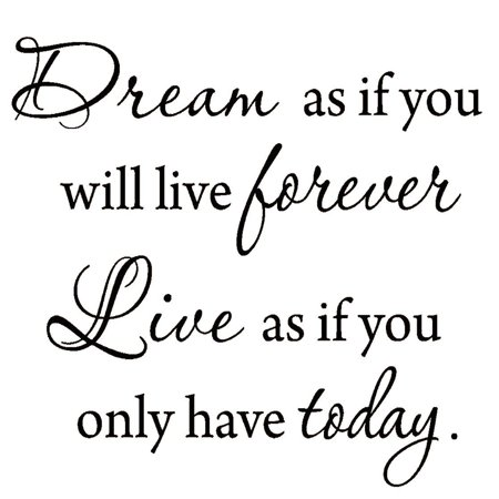 VWAQ Dream as if You'll Live Forever Live as if You'll Only Have Today Decal Wall Quote Inspirational Sayings Vinyl Lettering Motivational Words Stickers ()