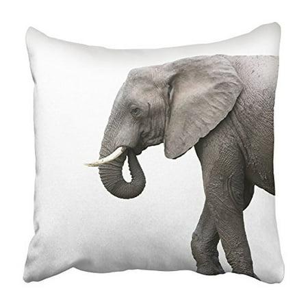 ARHOME Brown African Elephant White Gray Safari Animal Asia Asian Big Cut Cutout Pillowcase Cushion Cover 16x16 - Elephant Cutout