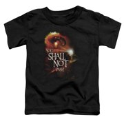 The Lord of the Rings You Shall Not Pass Little Boys Shirt