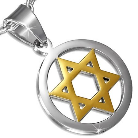 - Stainless Steel Silver Gold-Tone Jewish Star David Charm Pendant Necklace, 22