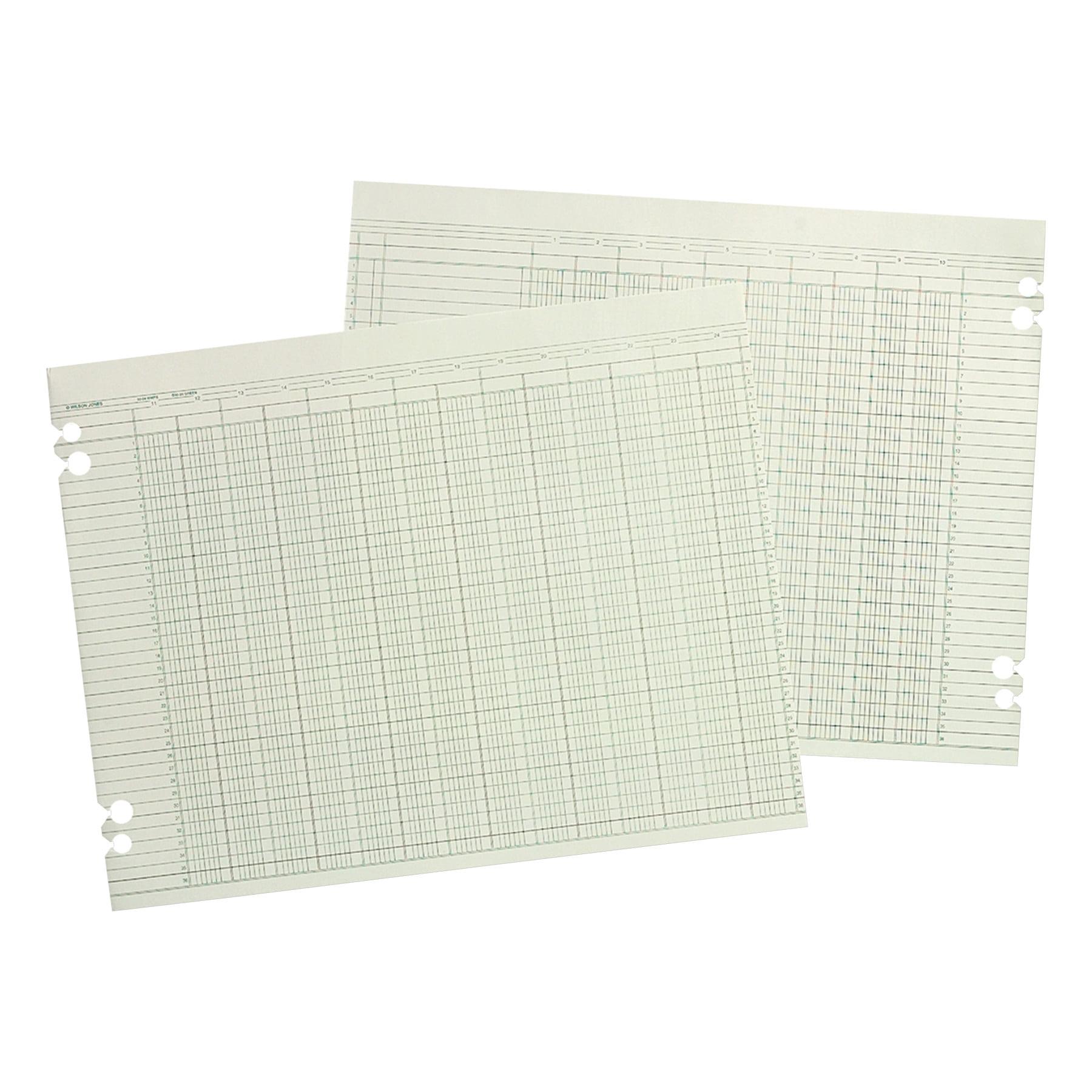Wilson Jones Accounting SHeets, 10 Columns, 11 x 14, 100 Loose SHeets Pack, Green -WLJG3010 by WILSON JONES CO.
