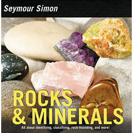 Rocks & Minerals - image 1 of 1