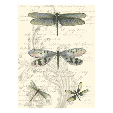 Dragonfly Delight II Print Wall Art ()