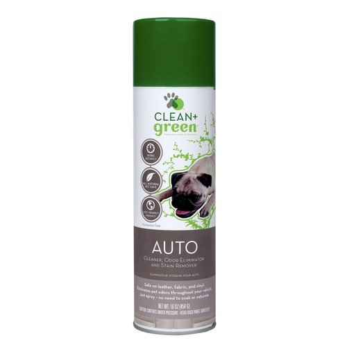 Clean+Green Auto Odor and Stain Remover
