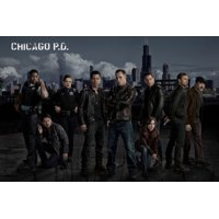 (11x17) Mini Poster Chicago Pd Poster