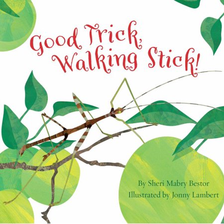 Good Trick Walking Stick - Hippie Sticks Tricks