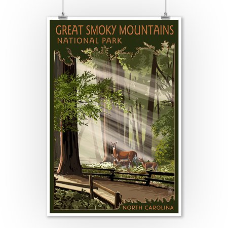 Deer Wall Decor Art - Great Smoky Mountains, North Carolina - Deer and Fawn - Lantern Press Poster (9x12 Art Print, Wall Decor Travel Poster)